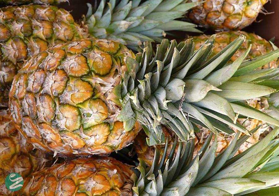 آناناس و آرتروز