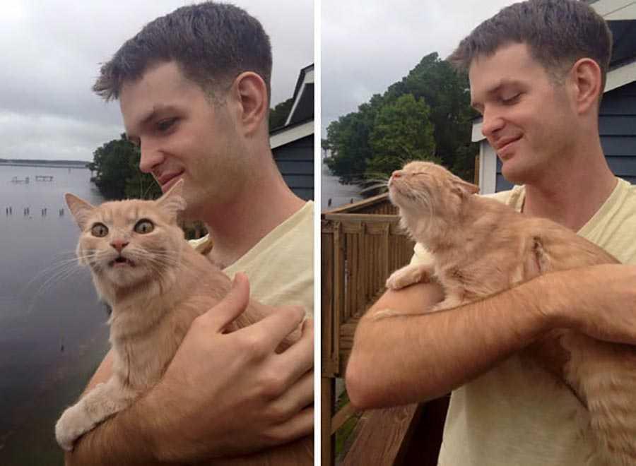 اولین باری که این گربه را به محیط بیرون از خانه می برند.