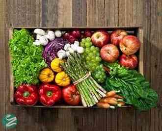 نکاتی برای حفظ تازگی، سلامت و نگهداری مواد غذایی