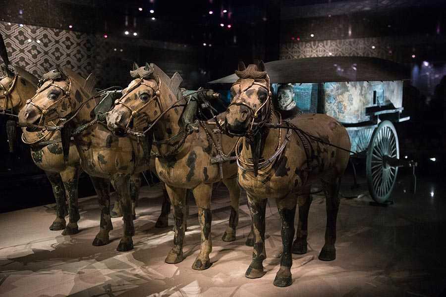 اسب های ارتش سفالین چین