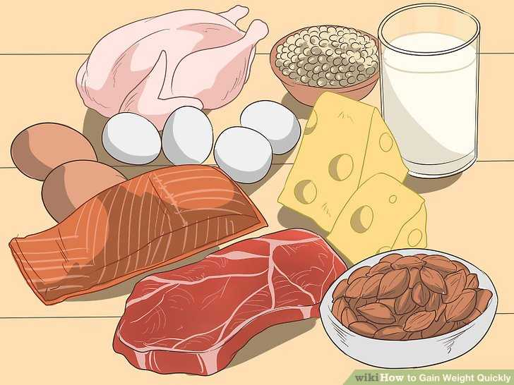 پروتئین بیشتری مصرف کنید
