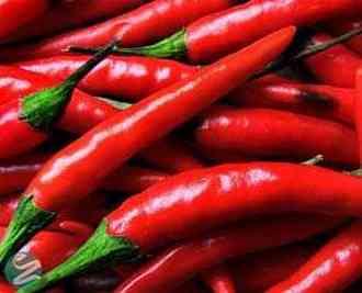 غذاهایی که به چربی سوزی بدن کمک می کنند