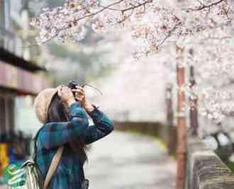 40 مقصد بسیار زیبا برای سفر در بهار