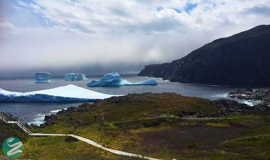 شبه جزیره ی بزرگ شمالی، نیوفاوند لند، کانادا