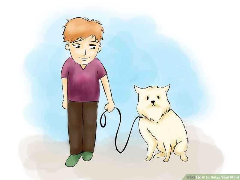 با حیوانات وقت بگذرانید
