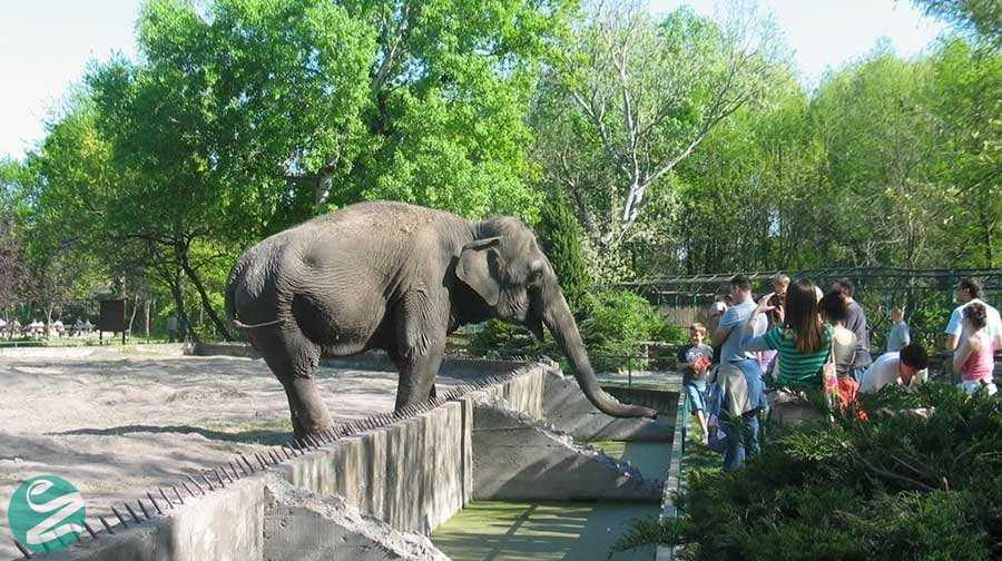 باغ وحش بلگراد