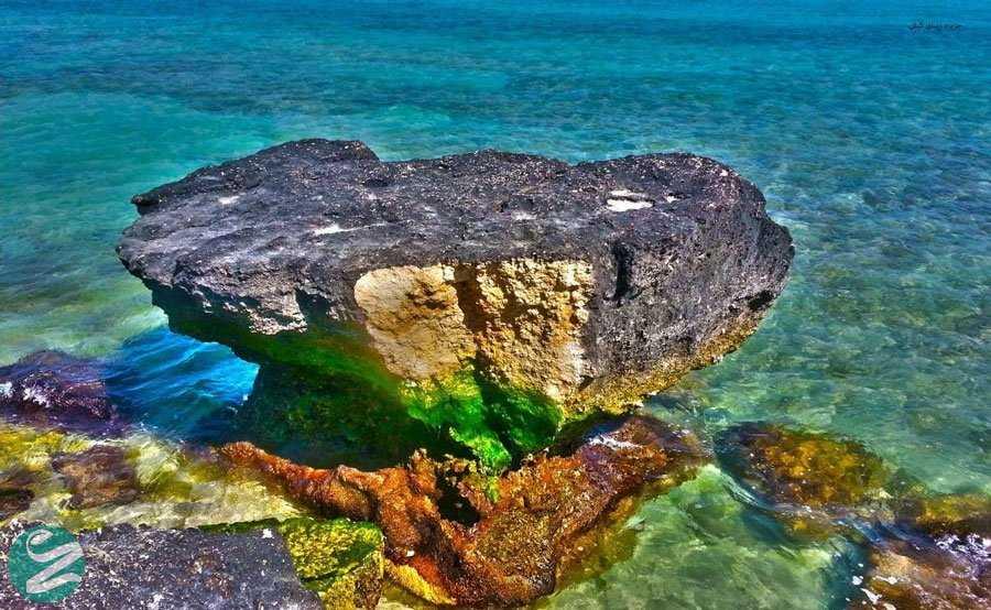 جاهای دیدنی کیش - ساحل مرجانی