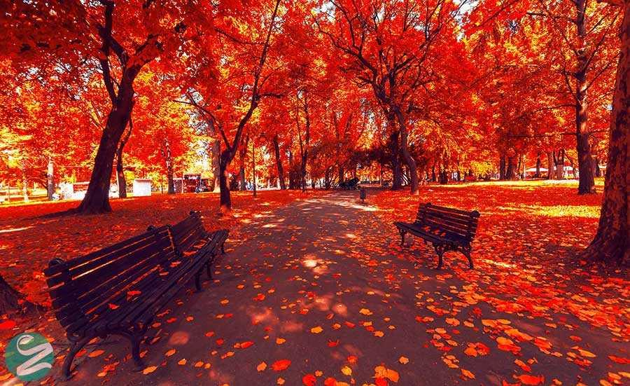 سفر به زیباترین شهرهای اروپا در فصل پاییز