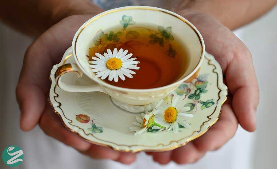 فواید چای بابونه