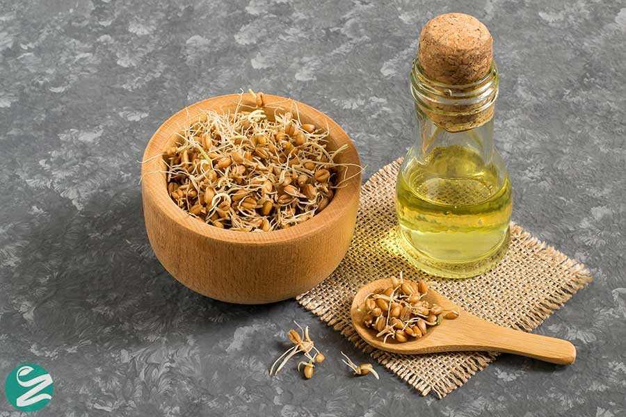 9 خواص شگفت انگیز جوانه گندم برای سلامت بدن