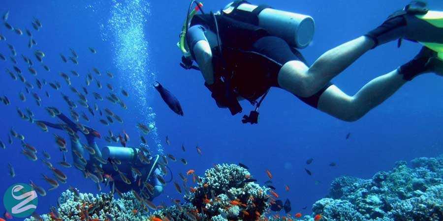 غواصی، Snorkeling