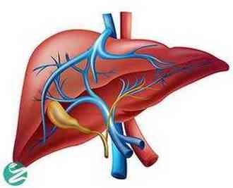بیماری های کبدی؛ با 9 بیماری خطرناک کبد آشنا شوید