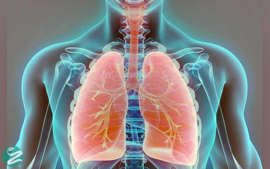 سلامت ریهها