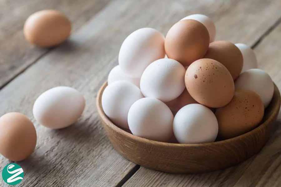 تخم مرغ برای تقویت حافظه