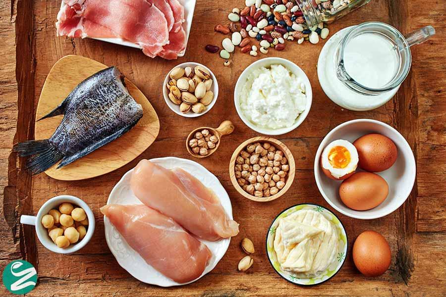 فواید مصرف پروتئین برای سلامتی