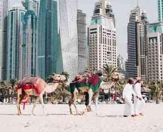 8 تا از جاذبههای گردشگری دبی
