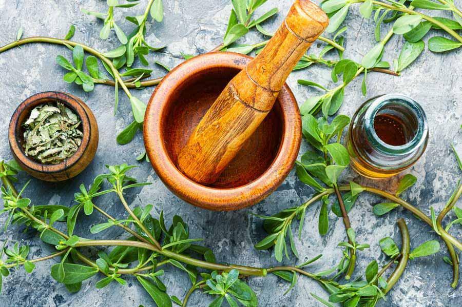 استفاده از گیاهان دارویی در داخل غذا