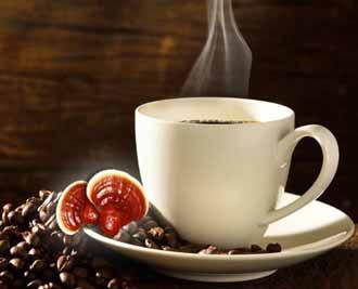 آیا از خواص قهوه فوری گانودرما آگاهی دارید؟