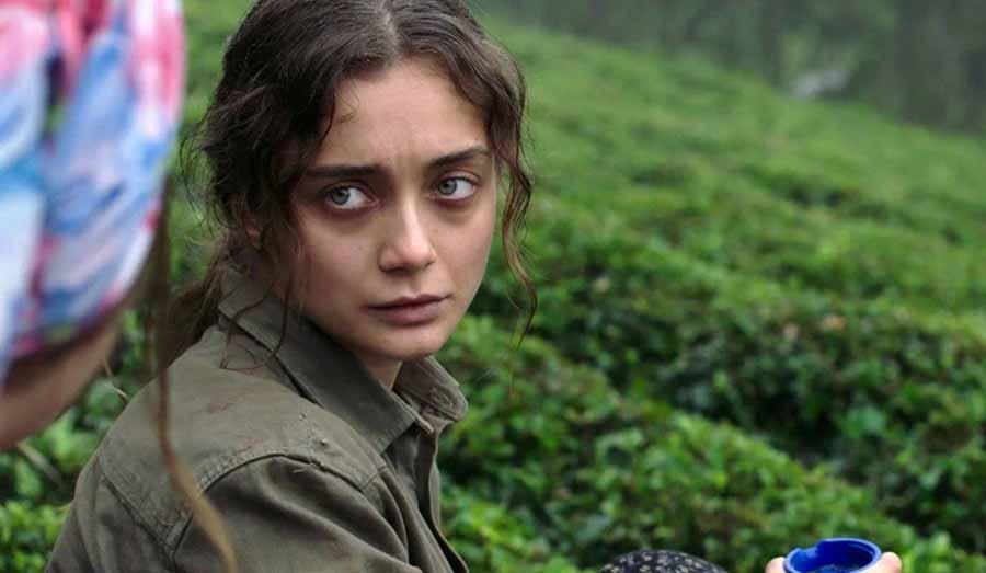 فیلم ترکی سیبل