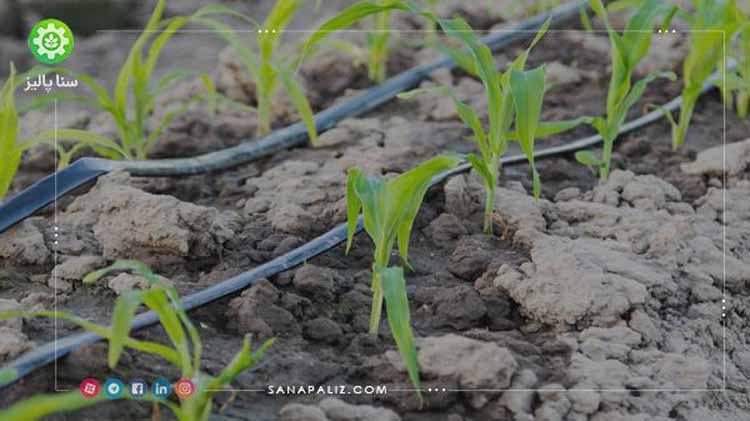 افزایش برداشت محصولات با کود و ورمی کمپوست